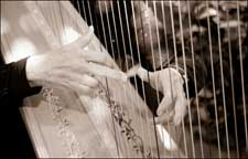 Closeup photo of harp and players hands